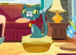 Cyber Chaton - טיפול בחתול
