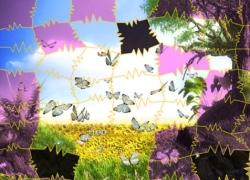 ג'גסואה פאזל - Jigsaw Puzzle