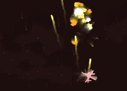 פריחת האש - Pyroblossom