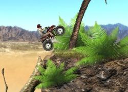 רוכב המדבר - Desert Rider