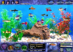 טייקון דגים - Fish Tycoon