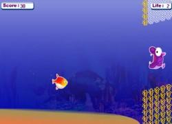 להציל את נמו - Saving Nemo