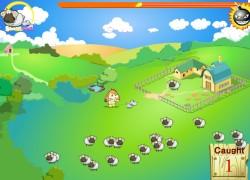 רועה הצאן - Sheep Game