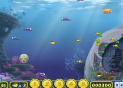 דג ברשת - Net Fish