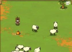 חזיר רועים - Sheperd Hog